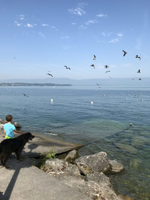Kleiner Junge und sein Hund am Lac Leman